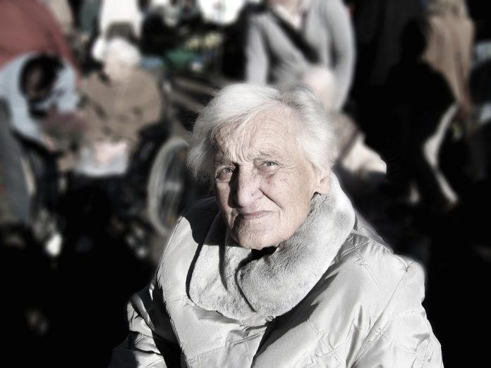 românia creștere a pensiilor Scandal pe legea pensiilor angajarea persoanelor de peste 45 de ani Recalcularea celor 5 milioane de dosare de pensii poate fi pusă în pericol de lipsa de personal şi de starea infrastructurii IT din Casele de Pensii Se recalculează pensiile Tichete sociale Pensionarii de lux Legea pensiilor va fi contestată Legea cu vârsta de pensionare standard legea pensiilor pensionari