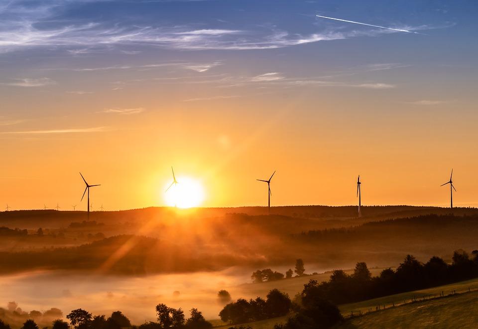 pană de curent generală Aprobarea OUG 114 parcuri eoliene românia Reţelele de transport şi distribuţie a energiei electrice au nevoie de investiţii de peste 10 miliarde de euro pentru înlocuirea infrastructurii cu durată de viaţă depăşită comisie parlamentară evoluția preţurilor la energie Abrogarea OUG 114/2018 Taxa pe lăcomie de 2% abuzurile anaf energie eoliana curent energie regenerabila