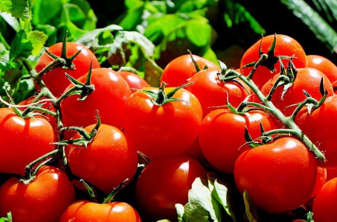 tomate românești