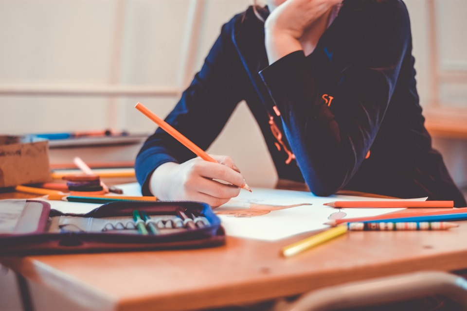 bani pentru elevi școlile fără profesori sistemul bugetar Predarea limbii române elevi scolari evaluarea nationala 2019