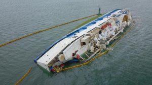 interzicerea exportului animalelor vii portul midia nava