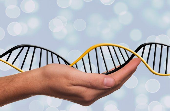 Institutul Naţional de Genomică