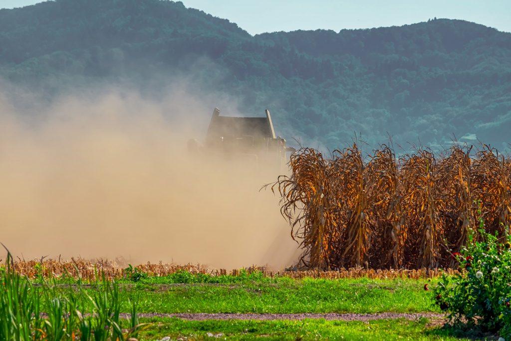 românia în secetă agricultură