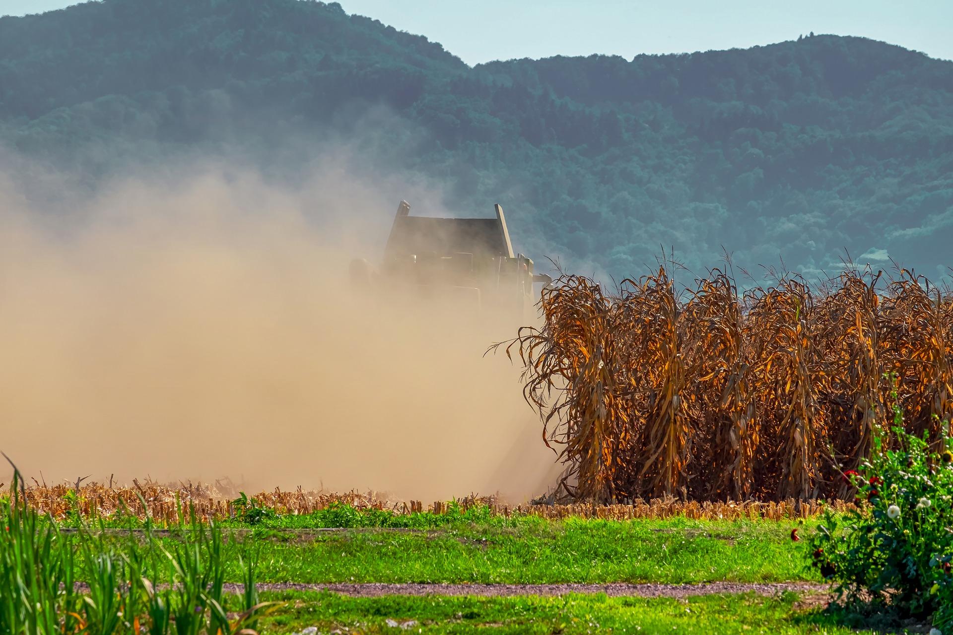 achizitiile de terenuri agricole românia în secetă agricultură