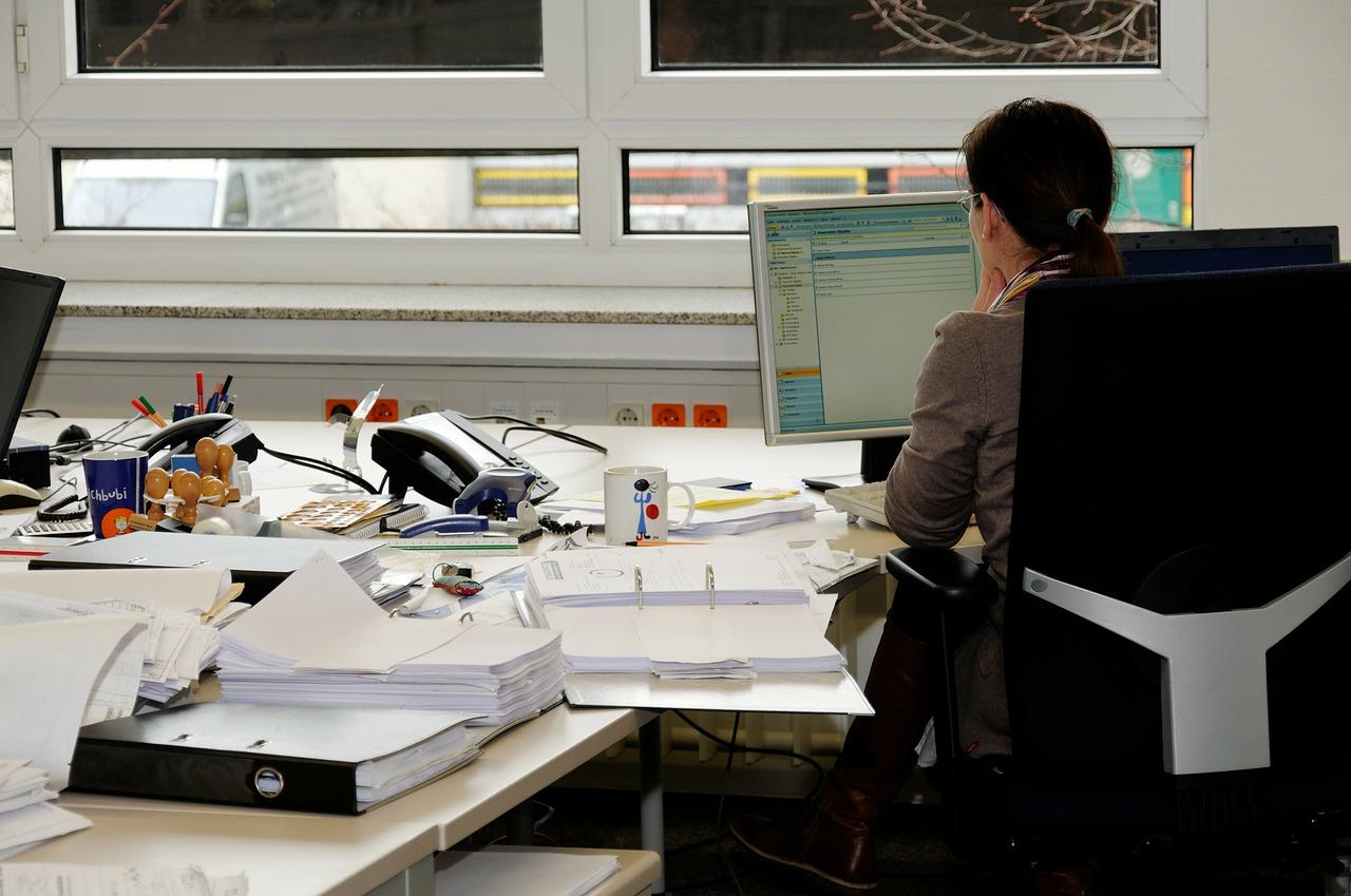 România șomerilor cu diplomă români șomeri